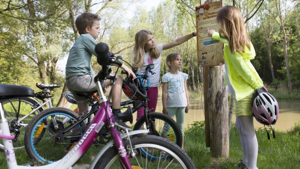 PR Bild Weinviertel Donauraum Kinderradroute © WTG/Wurnig