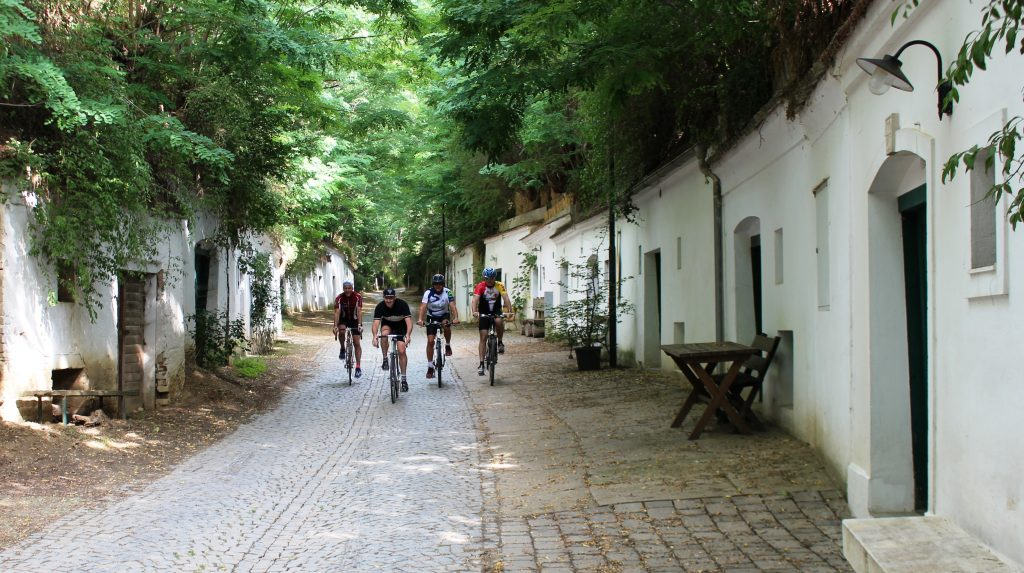 PR Bild Vino Versum Poysdorf Tourismus Radweg in der Poysdorfer Kellergasse