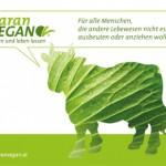 PR Bild Maran Vegan, Werbesujet Kuh