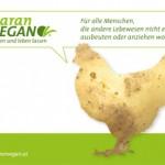 PR Bild Maran Vegan, Werbesujet Huhn