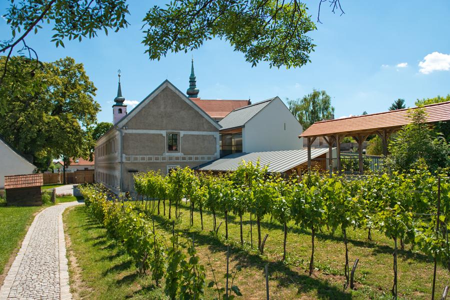 PR Bild Vino Versum Poysdorf