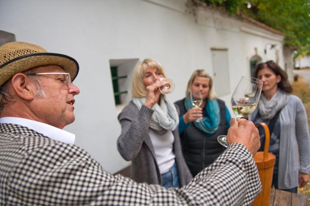 PR Bild Vino Versum Poysdorf Kellergassenführung und Weinverkostung © Vino Versum Poysdorf, Michael Loizenbauer