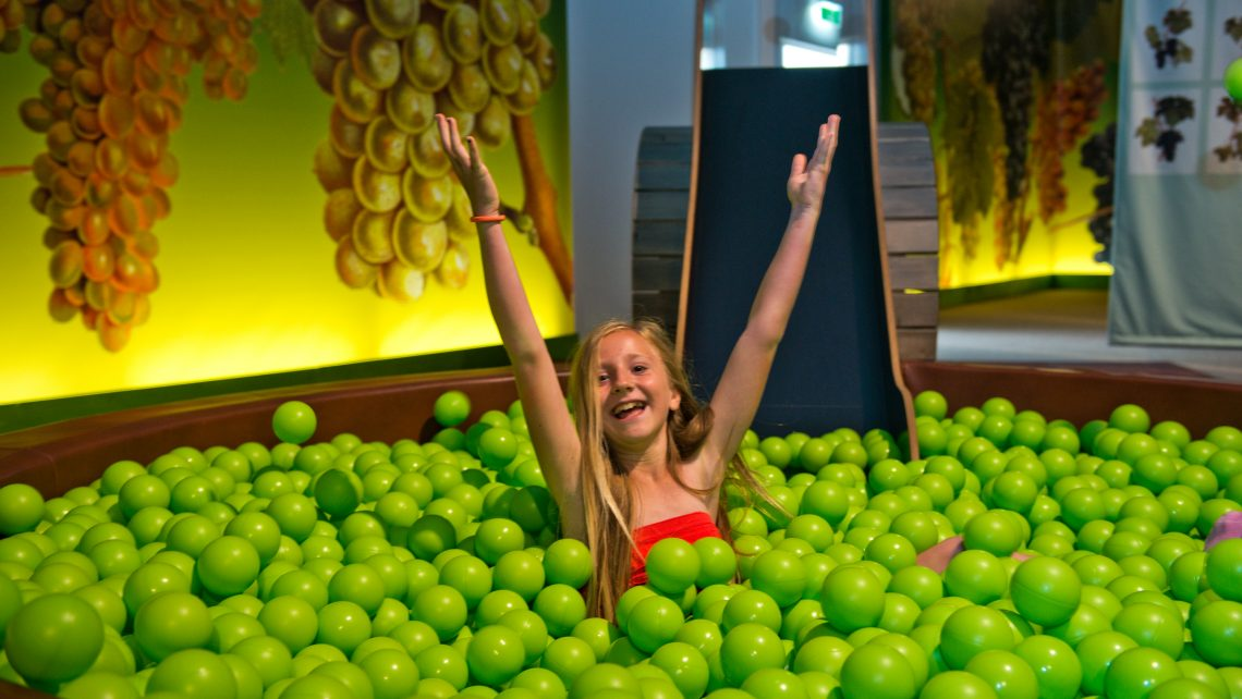 Pressebild Vino Versum Poysdorf Tourismus Bällebad in der WEIN+TRAUBEN Welt © Loizenbauer