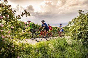 PR Bild Vino Versum Radfahren in Poysdorf © Robert Herbst